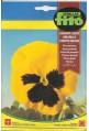 semillas fito pensamiento amarillo negro