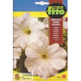 semillas fito petunia compacta blanca
