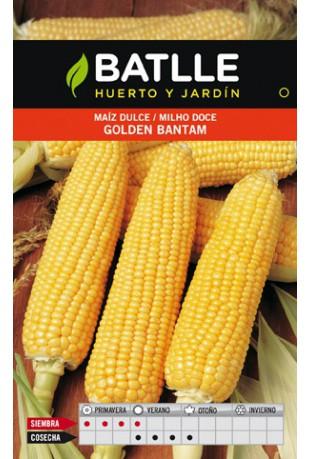 Maíz dulce Golden Bantam