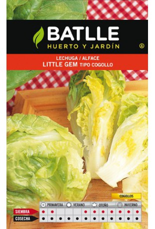 Lechuga Little gem cogollo
